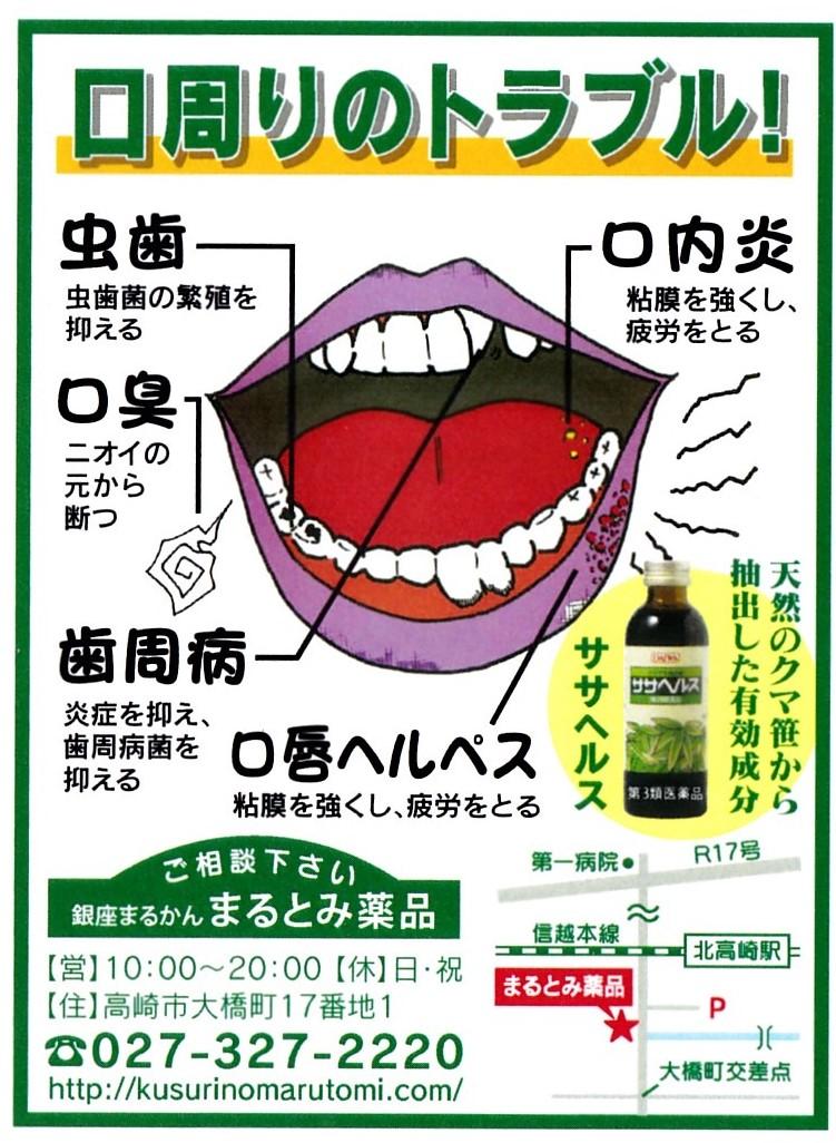 芳さん超お薦め・・・クマ笹の自然薬「ササヘルス」第3類医薬品 (腎臓さんにやさしい)